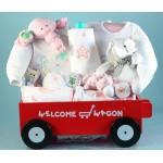 Deluxe Welcome Wagon Baby Girl Gift