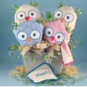 Two Hoots Owl Baby Gift Basket for Twins