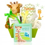 Baby Giraffe Basket