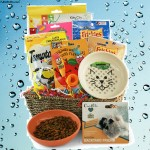 Catnip Crazy Pet Gift Basket - Cat