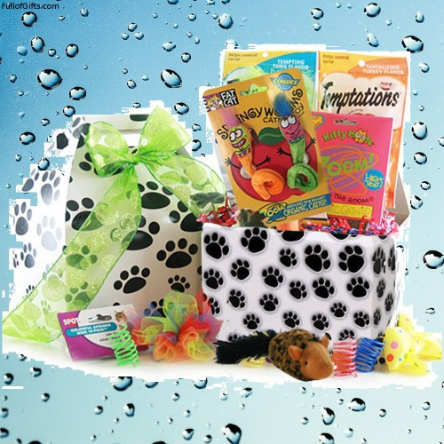 The Cats Meow Pet Gift Basket - Cat