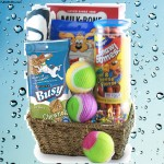 Faithful Friend Dog Gift Basket