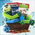 Ruff Day Pet Gift Basket - Dog